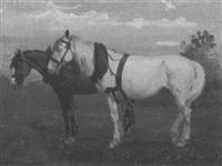 cavalli in sosta by umberto coromaldi