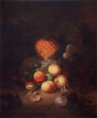still life with fruit and insects by joseph rhodes