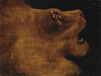 tête de lion by henri rousseau