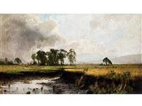 weite moorebene mit jungen bäumen vor hügel am horizont by arvid mauritz lindström