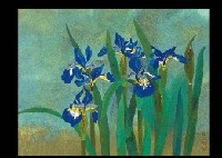 iris by kichisaburo yamaguchi