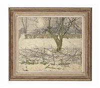 riseborough snow by erik smith
