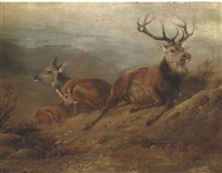 a stag, hind and doe in a landscape by john cother webb
