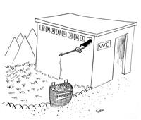 wc by reiser