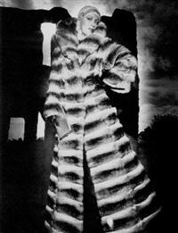 chinchilla by walter e. lautenbacher