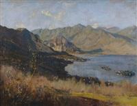 il lago dall'alto dalla motta di brisino by giovanni cappa legora