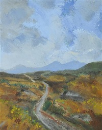 in the sheefry hills, mayo by harry reid