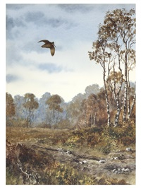 woodcock in a landscape by rodger mcphail