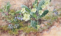 primroses on a mossy bank by helen cordelia angell