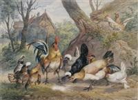hahn und hühner bei einem bauernhof by ernst hasse