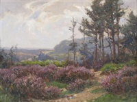 new forest heather by frederick golden short