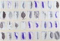 senza titolo (36 disegni a) by marcello guasti
