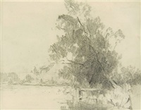 tree by a lake by jesse jewhurst hilder