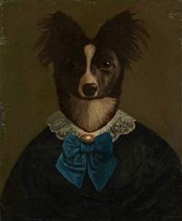 portrait à la coiffe canine by thierry poncelet