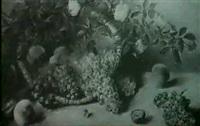 stilleben mit trauben und pfirsichen unter rosengirlanden by marianne (brezina) egerer
