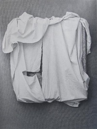 sans titre by joan fontcuberta