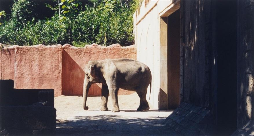 zoologischer garten hannover i zoo hannover i by candida höfer