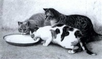 three cats drinking milk by john charles dollman