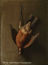 nature morte: male robin, louisiana bird painted from nature by george david coulon