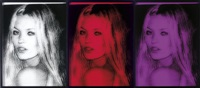 untitled, kate triptych (triptych) by paul rusconi