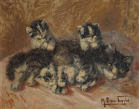 chatte et ses chatons by madeleine tombu