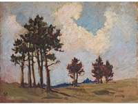 cape landscape with trees by nita spilhaus