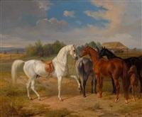 pferde auf der koppel by albrecht adam