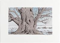 träd (portfolio of 6) by reinhold ljunggren