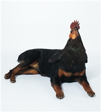 dog/rooster (from the misfits aeries) by thomas grünfeld