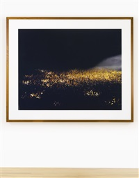 may day ii by andreas gursky