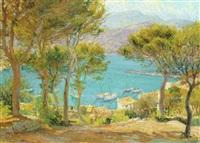 pinos y casas junto al mar by joan colom