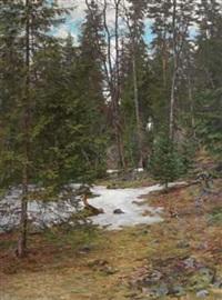 på befaring i skogen by jacob gloersen
