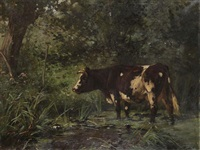 cow near the watering place in the forest by aymar (aimard alexandre) pezant