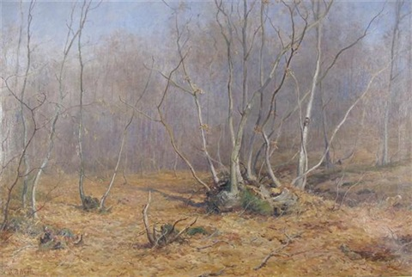 natures modest mantle by john bates noel