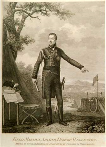 campaigns of the british army in portugal under the command of general the earl of wellington portrait frontispiece of wellington 18 works folio by henri lévêque