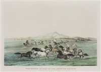 wild horses, at play on the american prairies by george catlin