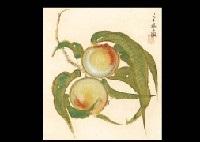 peach by kayo yamaguchi