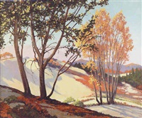 morning shadows down the dunes by tom milton wilder