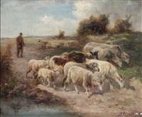 berger aux moutons à la fagne by henry schouten