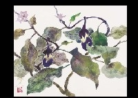 eggplant (+ bamboo shoot; 2 works) by takao yamazaki