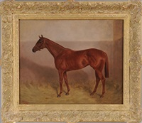 race horse in a loosebox by alfred grenfell haigh