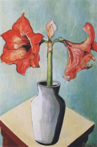 amaryllis in vase by ilse schaefer