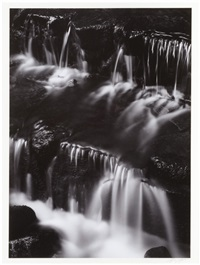 fern spring, dusk, yosemite national park by ansel adams