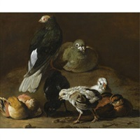 a still life with a couple of pigeons nesting and preening together with four chicks by jan victors