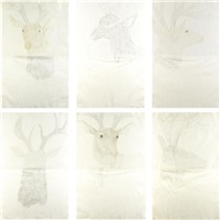 deer drawings (in 6 parts) by kiki smith