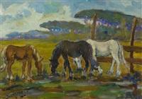 cavalli in pastura by piero semeraro