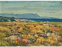 coastal landscape by piet (pieter gerhardus) van heerden