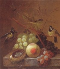 still life of grapes, a peach and a dragonfly, together with blue tits and a bird's nest, upon a stone ledge by johannes hendrik fredriks