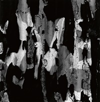 new york 329 by aaron siskind