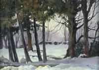 neve in giardino by camillo merlo